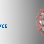 Данные о коронавирусе в мире